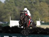 As we approach the new decade, here's a look back at some of the jumpers that brought us so many memories in the beginning of the 21st Century. Best of all: some of the horses are still in action.