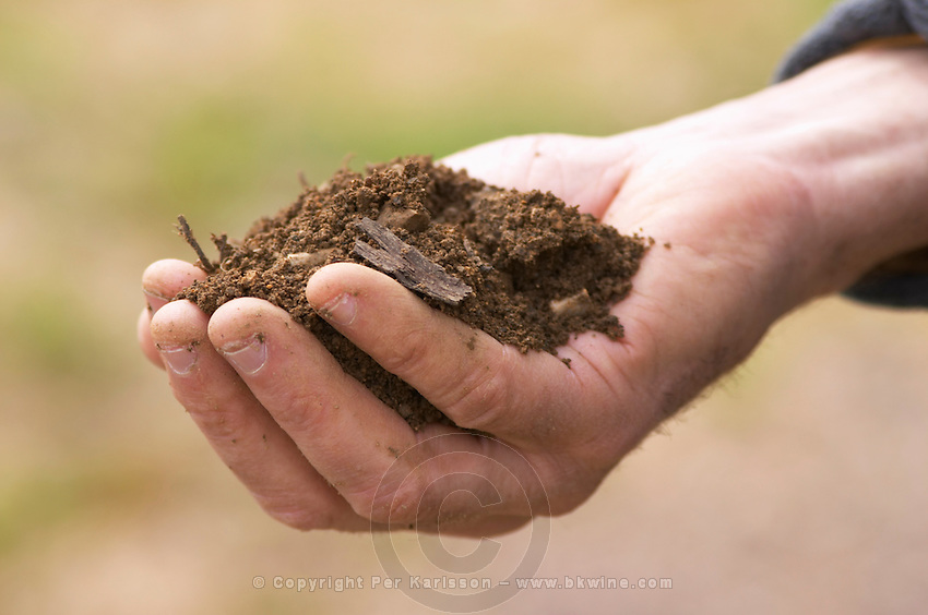 soil in the hand of Alberic Mazoyer dom a voge cornas rhone france
