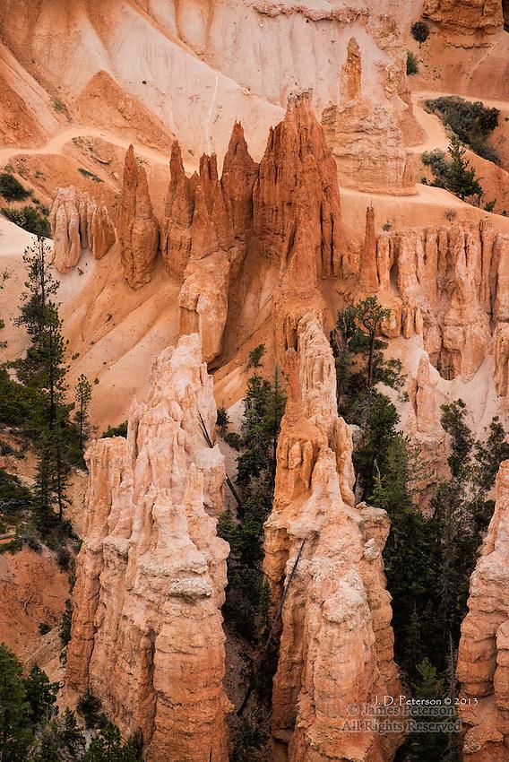 Hoodoos and Canyon Trail, Bryce Canyon