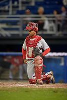 Auburn Doubledays catcher Jeyner Baez (13) during a game against the Batavia Muckdogs on September 6, 2017 at Dwyer Stadium in Batavia, New York.  Auburn defeated Batavia 6-3.  (Mike Janes/Four Seam Images)
