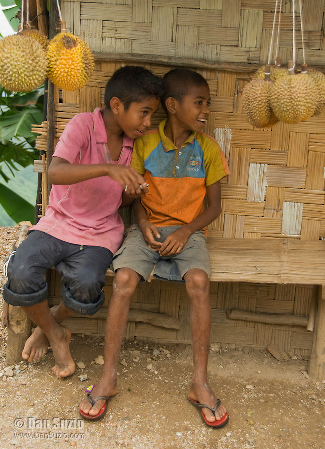 Two young boys sell durians at a roadside stand in the mountains south of Dili, Timor-Leste (East Timor)
