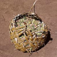 Zanzibar, Tanzania, East Africa, cloves, spice, spices, basket, harvest, agriculture, farming, plantation, cultivation, export