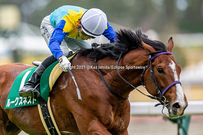 TOYOAKE,JAPAN-MAR 20: Rooks Nest,ridden by Hideaki Miyuki,wins the Falcon Stakes at Chukyo Racecourse on March 20,2021 in Toyoake,Aichi,Japan. Kaz Ishida/Eclipse Sportswire/CSM