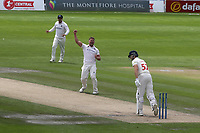 Sussex bowler, Stuart Meaker successfully appeals for lbw and Glamorgan batsman, Chris Cooke is out during Sussex CCC vs Glamorgan CCC, LV Insurance County Championship Group 3 Cricket at The 1st Central County Ground on 5th July 2021