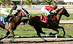 Feb 2010: Quiet Temper and Robby Albarado lead into the first turn of the SilverBulletDay Stakes at the Fairgrounds in New Orleans, La.