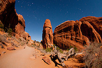 Devils Garden Under Stars and Moonlight, Arches National Park, Utah, US