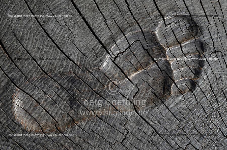 Germany, Darss, timber artwork, footprint carved  in wood