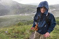 Hiker in rain and hail storm, Denali National Park, Interior, Alaska.
