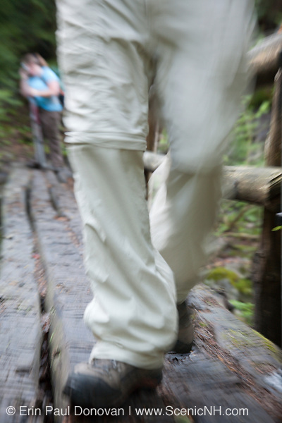 A hiker crossing foot bridge on Gorge Brook Trail in the White Mountains, New Hampshire USA during the summer months