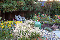 Flowering grasses (pennisetum) in small space backyard garden; Lundstrom Garden, design by Susan Morrison