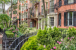 Mt Vernon Street homes on Beacon Hill, Boston, Massachusetts, USA