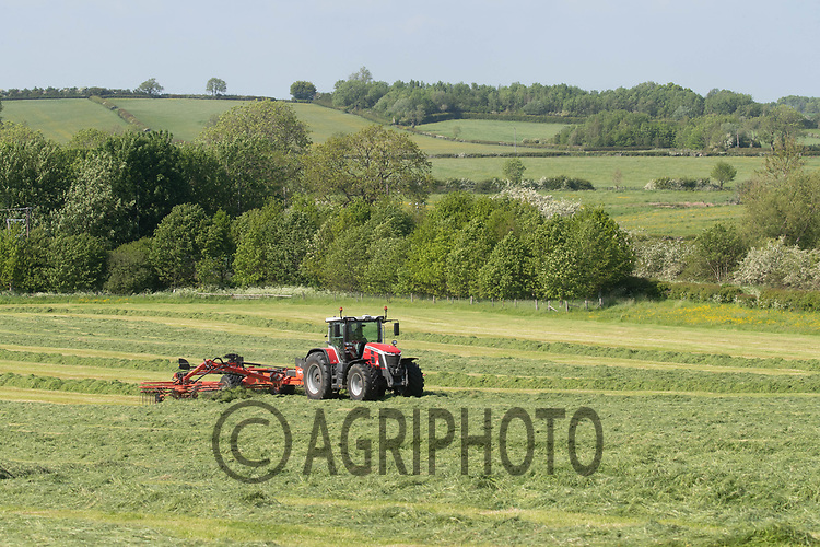 5-6-2021 Contractors rowing grass silage up<br /> ©Tim Scrivener Photographer 07850 303986<br />      ....Covering Agriculture In The UK....