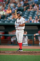 Great Lakes Loons Justin Yurchak (24) during a Midwest League game against the Clinton LumberKings on July 19, 2019 at Dow Diamond in Midland, Michigan.  Clinton defeated Great Lakes 3-2.  (Mike Janes/Four Seam Images)