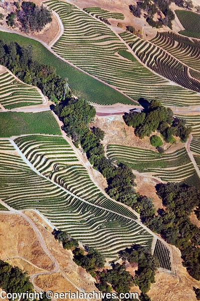 aerial photograph of mountain vineyards in the Mayacamas Mountains east of Geyserville in autumn, Sonoma county, California