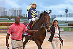HALLANDALE BEACH, FL - FEBRUARY 06:     Lukes Alley #1 with Paco Lopez  heads to the winner's circle in the 34th running of the Gulfstream Park Turf Handicap G1 on Donn Handicap Day  at Gulfstream Park on February 06, 2016 in Hallandale Beach, Florida. (Photo by Liz Lamont)