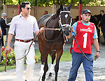 Stopchargingmaria (no. 1), ridden by Javier Castellano and trained by Todd Pletcher, wins the the 98th running of the grade 1 Coaching Club American Oaks for three year old fillies on July 20, 2014 at Saratoga Race Course in Saratoga Springs, New York.  (Bob Mayberger/Eclipse Sportswire)