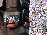 Totem pole and cherry blossoms