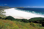 South Africa, Cape Town, Cape Peninsula, Noordhoek: 6 km white sandy beach at Chapman's Bay