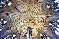 The vaulted ceiling of the Chapter House of  the medieval Wells Cathedral built in the Early English Gothic style in 1175, Wells Somerset, England
