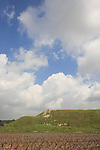 Israel, Shephelah, a view of Tel Lachish from the west