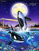 Interlitho, FANTASY, paintings, 2 orcas, moon, light, KL, KL3868,#fantasy# illustrations, pinturas