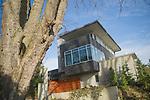 Modern Gray Concrete House