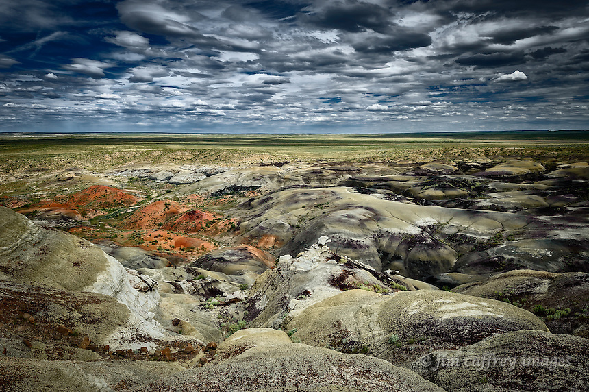 Clay mounds and deep washes near the edge of the Fossil Forest in New Mexico's San Juan Basin