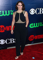 CBS, CW And Showtime 2014 TCA Summer Stars Party