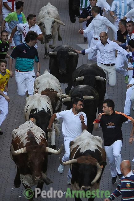 Participants run in front of Condes de la maze's bulls during the bull run of the San Sebastian de los Reyes Festival, near Madrid, on august 28, 2014 © Pedro ARMESTRE