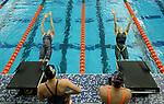 Summit League Swimming and Diving Championship 2