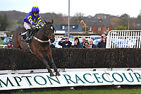 Winner of The Crystal Services Commercial and Domestic Cleaning Chase Finnegan's Garden ridden by Page Fuller and trained by Zoe Davidson during Horse Racing at Plumpton Racecourse on 10th February 2020