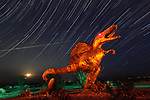 Sculptures of animals with startling eyes stand amidst incredible star trails.  They were commissioned by a late millionaire who wanted to show what creatures once roamed his property.<br /> <br /> Dennis Avery, the founder of Avery Labels, commissioned artist Ricardo Breceda to build the sculptures, which are now well known in the Californian town of Borrego Springs.  These pictures were taken by amateur photographer Chris Brady from San Diego, California.  SEE OUR COPY FOR DETAILS.<br /> <br /> Please byline: Chris Matthew Brady/Solent News<br /> <br /> © Chris Matthew Brady/Solent News & Photo Agency<br /> UK +44 (0) 2380 458800