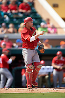 Florida Southern Moccasins catcher Evan Barnes (39) during an exhibition game against the Detroit Tigers on February 29, 2016 at Joker Marchant Stadium in Lakeland, Florida.  Detroit defeated Florida Southern 7-2.  (Mike Janes/Four Seam Images)