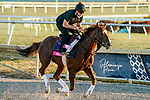 01-21-21 Pegasus World Cup Preparations