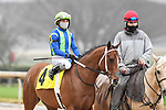 February 27, 2021: #4, Jackie's Warrior in the the post parade of the Southwest Stakes (Grade 3) at Oaklawn Park in Hot Springs, Arkansas. Ted McClenning/Eclipse Sportswire/CSM