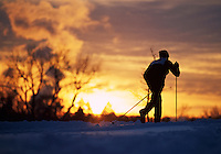 A nordic skier in silhouette at sunset. sports, skiing, cross country.