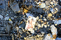 CHINA. Beijing. A playing card lies in the ruins of an old hutong (tradtional homes) destroyed to make may for new developments aimed at modernising the city for the 2008 Summer Olympics. 2005