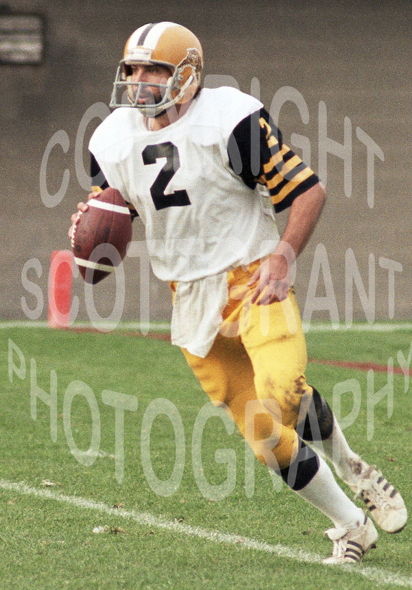 Tom Clements HamiltonTiger Cats quarterback 1983. Copyright photograph Scott Grant