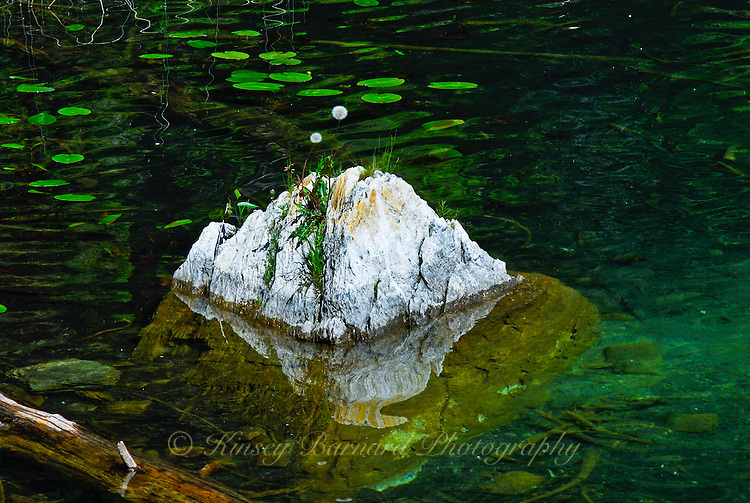 """""""GONE TO SEED""""<br /> <br /> A craggy boulder juts up through the emerald green waters of a Montana lake. Dandelions, gone to seed, play king of the mountain. Lily pads float on the crystal clear water."""