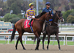 Candy Boy and Gary Stevens in the post parade before the Grade 2 Robert B. Lewis Stakes at Santa Anita Park in Arcadia, California on February 8, 2014. (Zoe Metz/ Eclipse Sportswire)