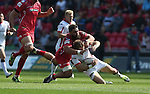 Guiness Pro12<br /> Scarlets number 8 Rory Pitman dives in to tackle Ulster wing Craig Gilroy.<br /> Scarlets v Ulster<br /> Parc y Scarlets<br /> <br /> 06.09.14<br /> ©Steve Pope-SPORTINGWALES