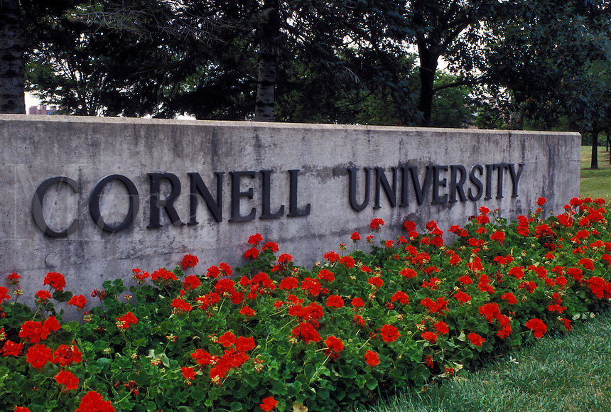 university, Cornell, Ithaca, NY, New York, Finger Lakes, Entrance to the campus of Cornell University.