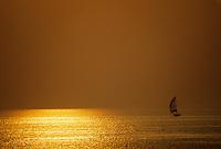 Europe/France/Bretagne/56/Morbihan/Quiberon: Soleil couchant sur la côte sauvage