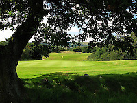 "Pictured: Palleg Golf Club in Lower Cwmtwrch near Swansea, Wales, UK STOCK PICTURE<br /> Re: Bosses of the Celtic Manor, where the Ryder Cup and the NATO summit were held, are threatening legal action against a village club in Swansea changing its name to Celtic Minor.<br /> Palleg golf club was renamed Celtic Minor by businessman owner John Adams to attract more members.<br /> But a spokesman for Celtic Manor warned they will fight ""any attempt to take unfair advantage of their reputation"".<br /> Celtic Minor said ""there wasn't any issue"" with the name change.<br /> Club manager Melanie Eaton said the name change ""works in their favour."""