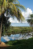 Xingu Indigenous Park, Mato Grosso State, Brazil. Posto Leonardo. The view from Orlando Vilas Boas' kitchen window.