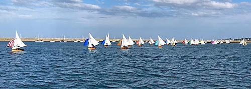 Water Wag racing at Dun Laoghaire Harbour on Bloomsday 2021