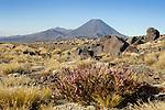 Mt. Ngauruhoe, Alpine terrain, NZ.
