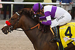 HALLANDALE BEACH, FL- APRIL 02: #4 Nyquist with jockey Mario Gutierrez up wins the Florida Derby at Gulfstream Park on April 02, 2016 in Hallandale Beach, Florida. (Photo by Arron Haggart/Eclipse Sportswire/Getty Images)