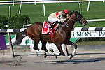 04 10 2009: Le Grand Cru and Jose Lecano win against a short field in the 29th running of the Grade II Kelso, which was taken off the turf and run at a mile on a sloppy track at Belmont Park, Elmont, NY