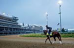 September 1, 2020: Finnick the Fierce exercises as horses prepare for the 2020 Kentucky Derby and Kentucky Oaks at Churchill Downs in Louisville, Kentucky. The race is being run without fans due to the coronavirus pandemic that has gripped the world and nation for much of the year. Scott Serio/Eclipse Sportswire/CSM